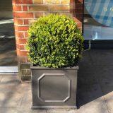 Faux Lead Chelsea Box Square Grey Light Stone Planter W55 H55 L55 cm