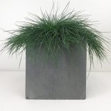 Square Box Contemporary Grey Light Concrete Planter H50 L50 W50 cm
