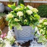 Faux Lead Lattice Box Square Grey Light Stone Planter W45 H45 L45 cm