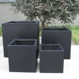 Square Box Contemporary Black Light Concrete Planter H30 L30 W30 cm