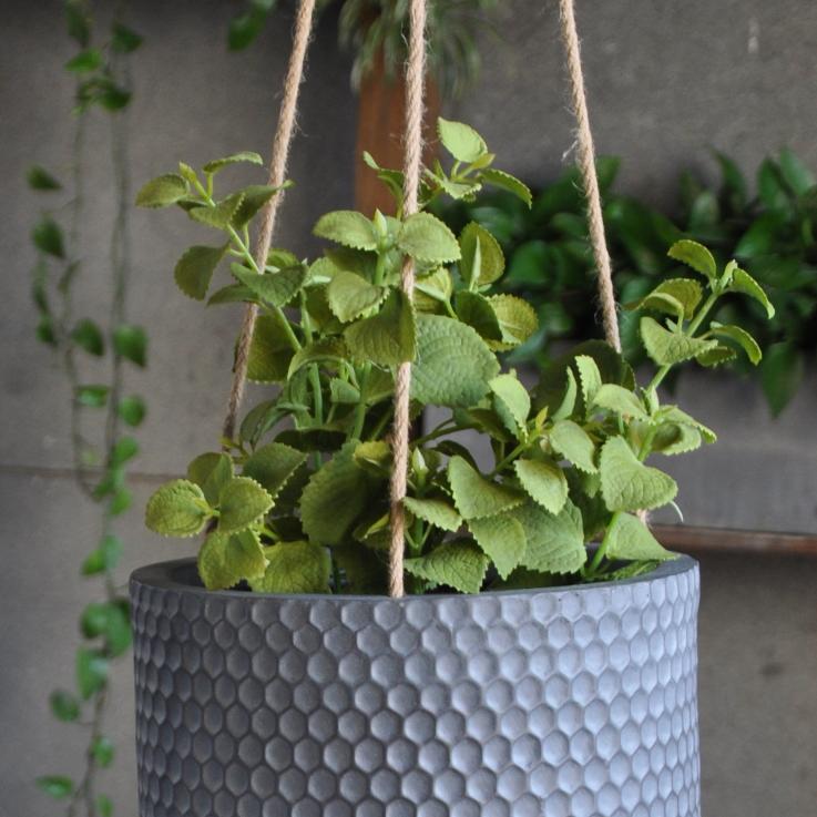 hanging_planters_3jpg